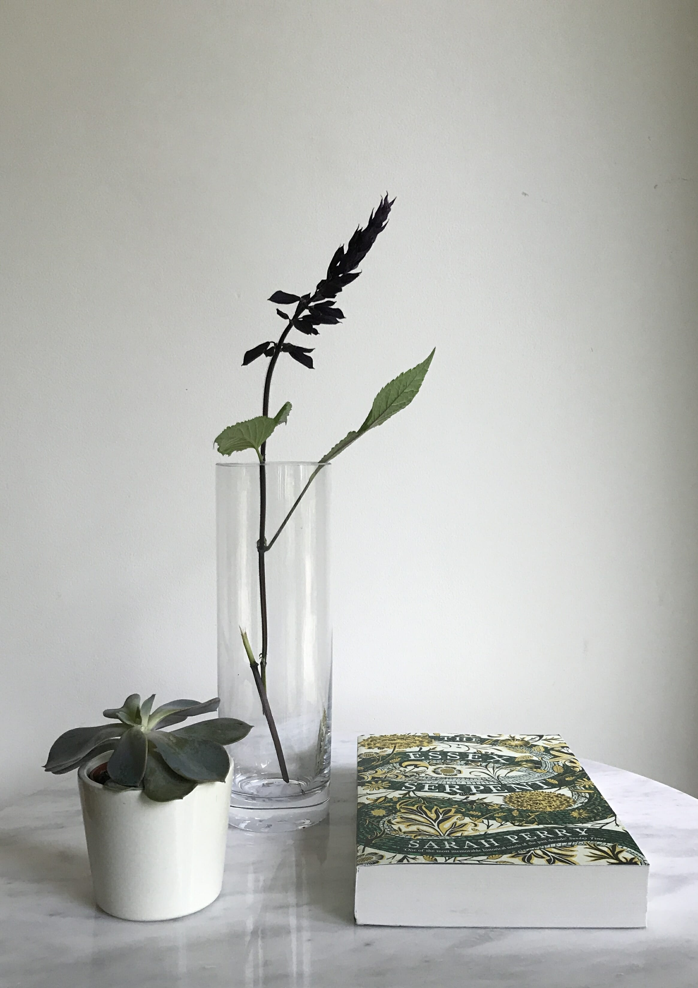 5 Health and Wellbeing Rituals - vase, book and potted plant on desk